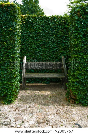 bench in the old park - stock photo