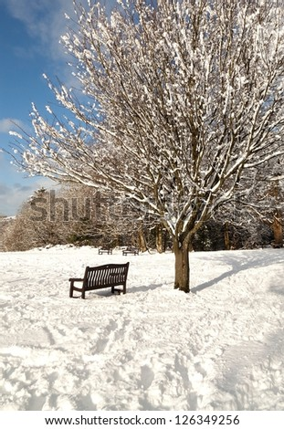 Bench in the park during the winter with snow - stock photo