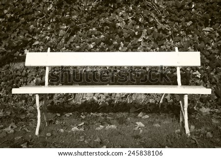 Bench in the park with autumn leaves in Spain. Horizontal - stock photo
