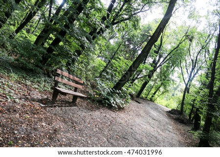 Bench in the wild