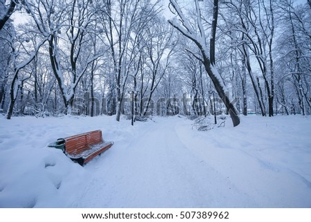 bench in the winter city park with snow covered trees