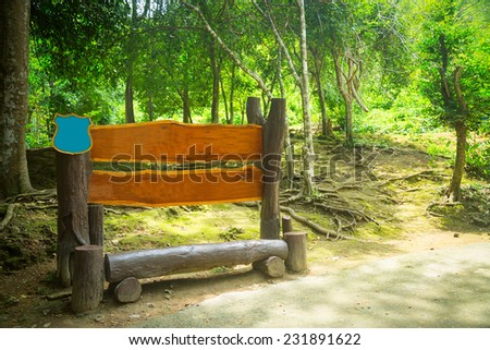 Bench in wood in the forest. Jungle. Summer - stock photo