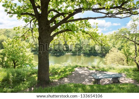 Bench near the old oak tree at the river, the park Alexandria Ukraine - stock photo