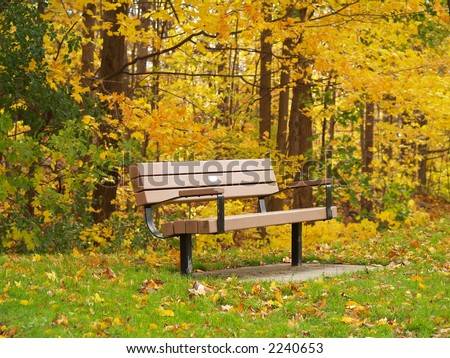 Bench on Park - stock photo