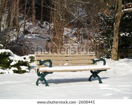 Bench on winter park - stock photo