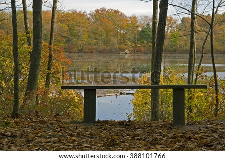 Bench overlooking the lower leach pond at Borderland State Park in Easton, Massachusetts  - stock photo