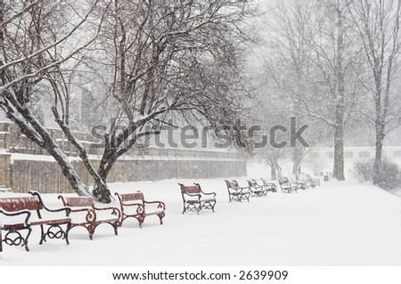 Benches covered with snow. Winter park scene. Snowing.