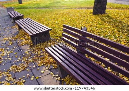 benches group in autumn park and morning sunlight - stock photo