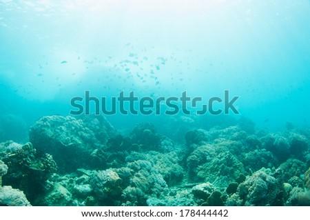 Beneath the surface. - stock photo