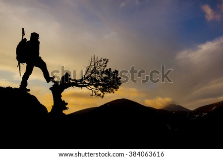 bent tree silhouette and man