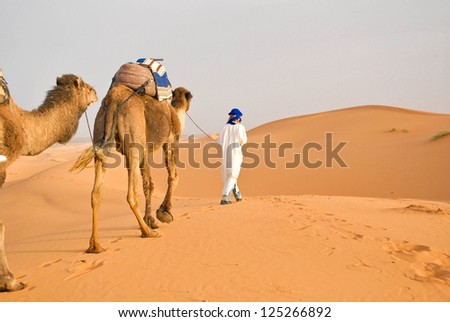 Berber with his camels in Sahara desert - stock photo