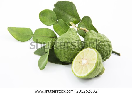Bergamot isolated white background. - stock photo