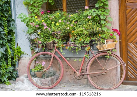 Bergheim (Bas-Rhin, Alsace, France) - Exterior of old house with pink bicycle and potted flowered plants - stock photo