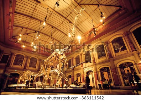 BERLIN, GERMANY - AUG 30: Giant skeletons of Brachiosaurus and Diplodocus in Dinosaur Hall on August 30, 2015. Natural History museum, established in 1810, houses millions paleontological specimens - stock photo