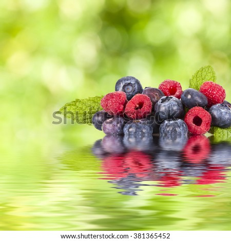 berries and red berries with reflection in water - stock photo
