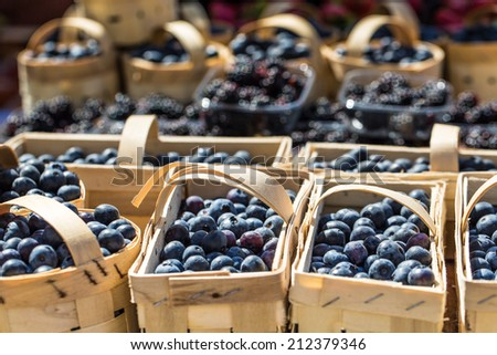 Berries at the farmers market - stock photo