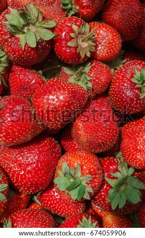 Berries of fresh, ripe, red strawberries scattered in a box.