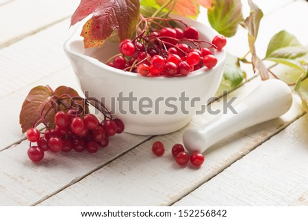 Berries of red viburnum in mortar  on white wooden background. Selective focus.