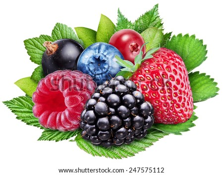 Berries on a white background. File contains clipping paths. - stock photo