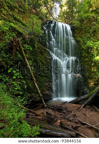 Berry Creek Falls in the Coastal Redwood forest in Big Basin, California - stock photo