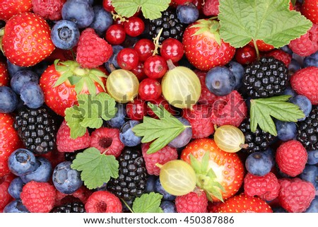 Berry fruits berries collection strawberries, blueberries raspberries red currants leaves top view - stock photo
