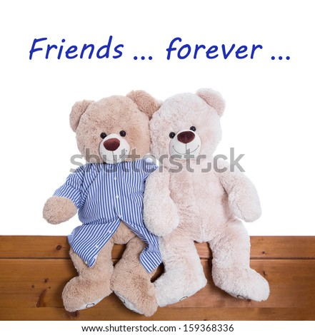 Best friends forever - teddy bears sitting together isolated on white background - stock photo