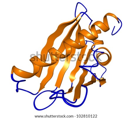 Bet V1 birch pollen allergen protein molecule. Ribbon representation with secondary structure coloring. - stock photo