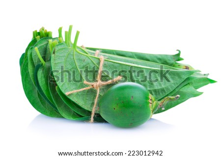 Betel leaf edible eating culture of Asia - stock photo