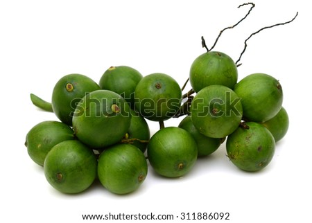 Betel nut fresh betel palm isolated on white