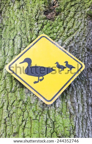 Beware of ducks crossing the road, yellow road sign on a tree background. - stock photo