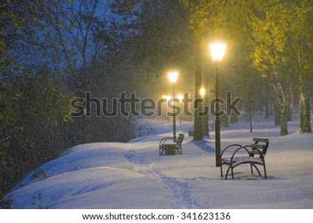 Bewitching evening landscape with  first snowfall in park avenue. Gold foliage on trees and snowdrifts. - stock photo