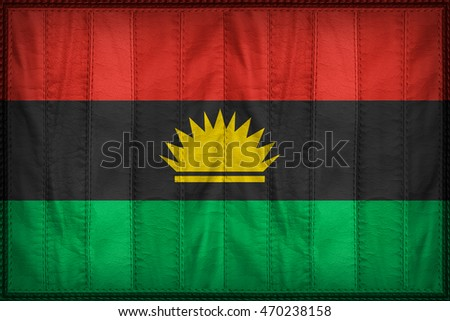Biafra flag pattern on synthetic leather stock illustration biafra flag pattern on synthetic leather texture 3d illustration style altavistaventures Images