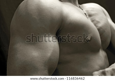 biceps muscle - stock photo