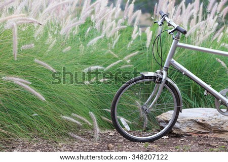 Bicycle In Meadow