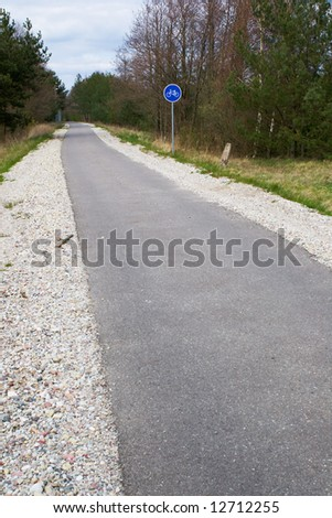 bicycle path in the spring forest