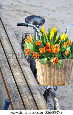 Bicycle with tulips - stock photo