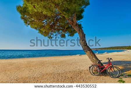 Bicycles under the pine tree on an empty beach of Adriatic Sea in Croatia - stock photo