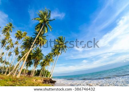 BIDUK BIDUK, INDONESIA - FEB 11: Atmosphere at beach on Feb 11, 2016. Photo at Kabupaten Berau Road, about 3km from Jetty - stock photo