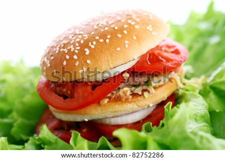Big and tasty burger on the salad leaves - stock photo