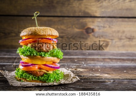 Big and tasty double-decker burger - stock photo
