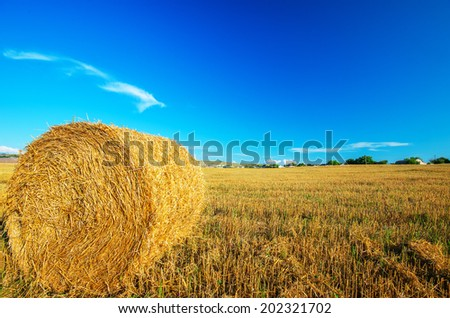 Big bale of straw left in the countryside in a perfect sunny day. Natural composition - stock photo