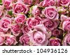 big bunch of multiple pink roses - stock photo
