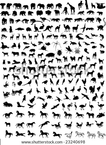Big collection of different animals  vector silhouettes - stock photo