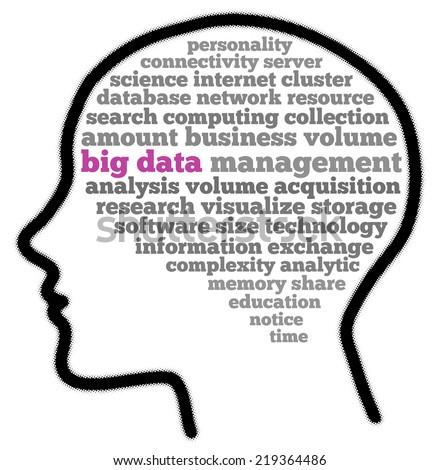 Big data in words cloud - stock photo