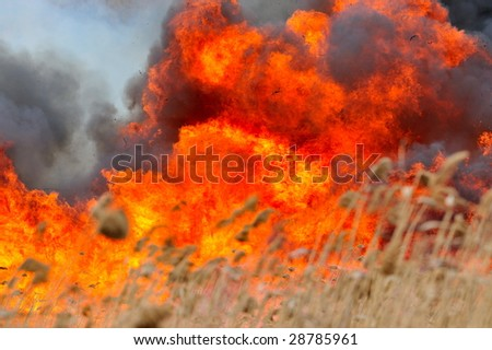 big flames on field during fire