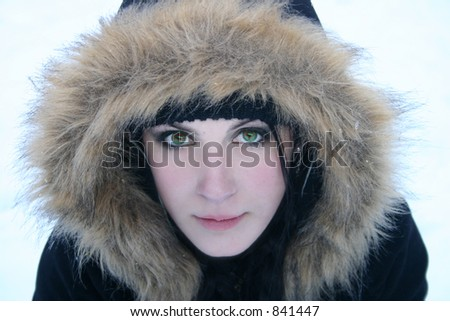 Big Green Eyes in the Snow - stock photo