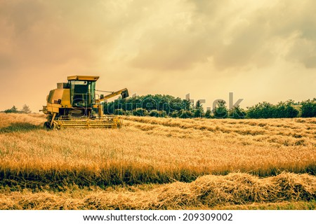 Big harvester machine on a countryside field - stock photo