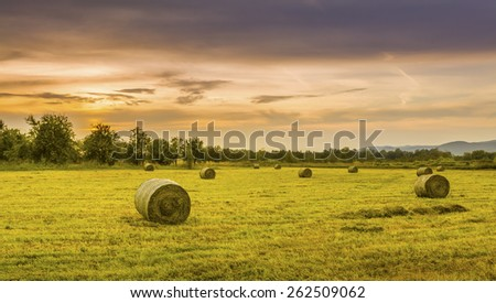 Big hay bale rolls in a lush green field - stock photo