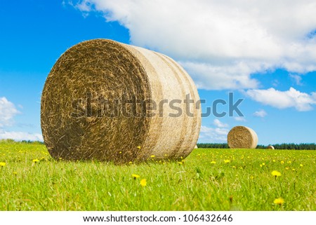 Big hay bay roll in a green field and blue sky - stock photo