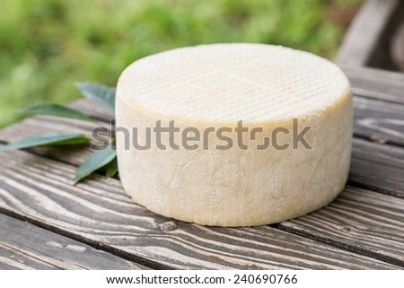 Big head of goat cheese lying on a wooden table boards - stock photo